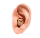 Hearing Protection-Hunting-Audibel